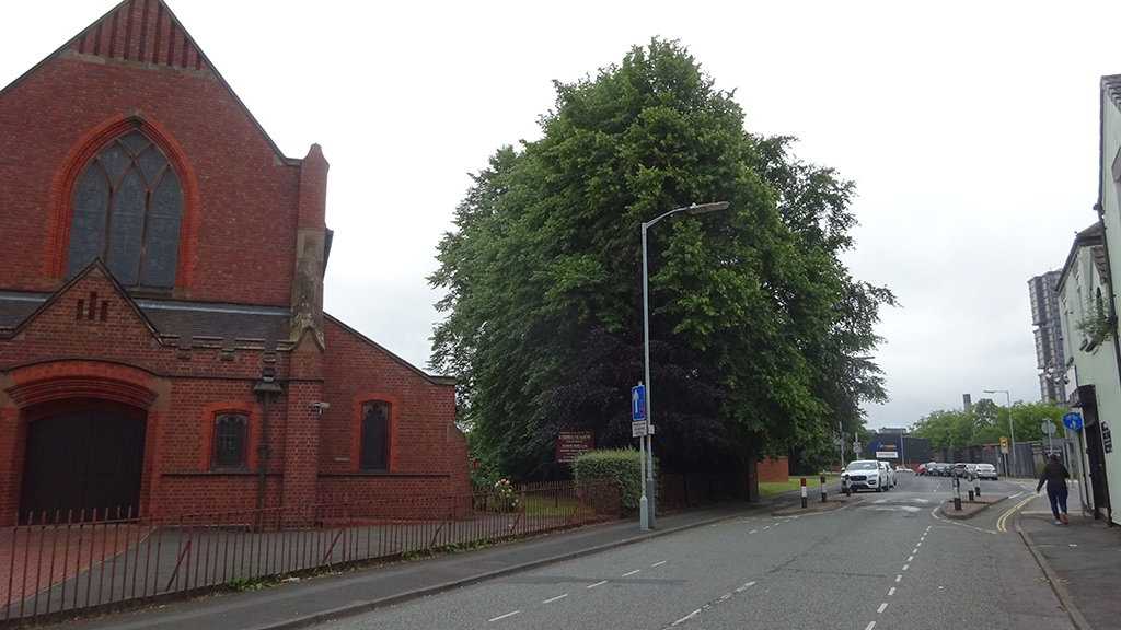 St Stephen the Marytr, Wolverhampton tree survey. Landscape Planning 3